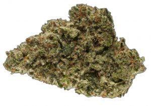 Image of cannabis strain