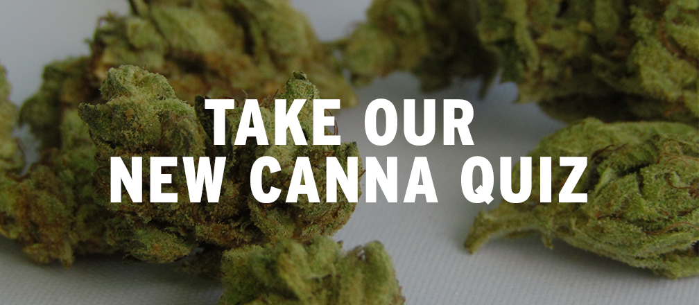 Take Our New Canna Quiz